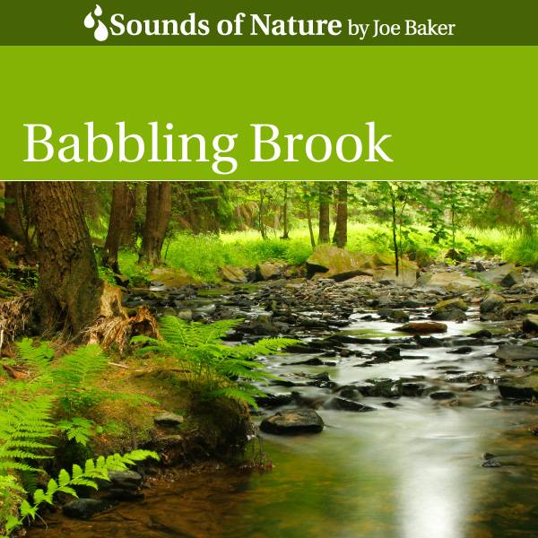 Nature Sounds by Joe Baker - Babbling Brook