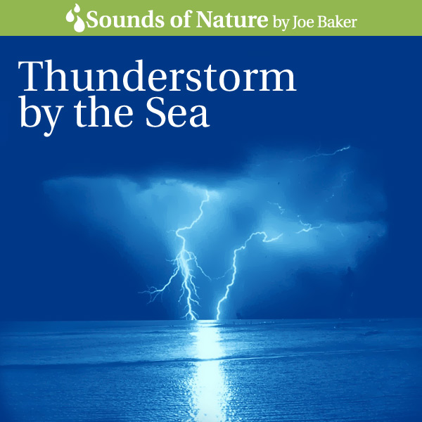 Nature Sounds by Joe Baker - Thunderstorm by the Sea