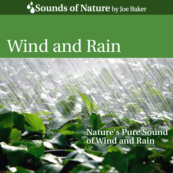 Nature Sounds by Joe Baker - Wind and Rain